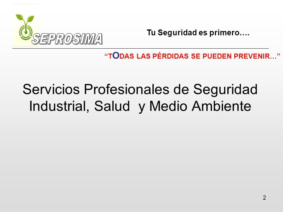 2 Servicios Profesionales de Seguridad Industrial, Salud y Medio Ambiente Tu Seguridad es primero…. T O DAS LAS PÉRDIDAS SE PUEDEN PREVENIR…