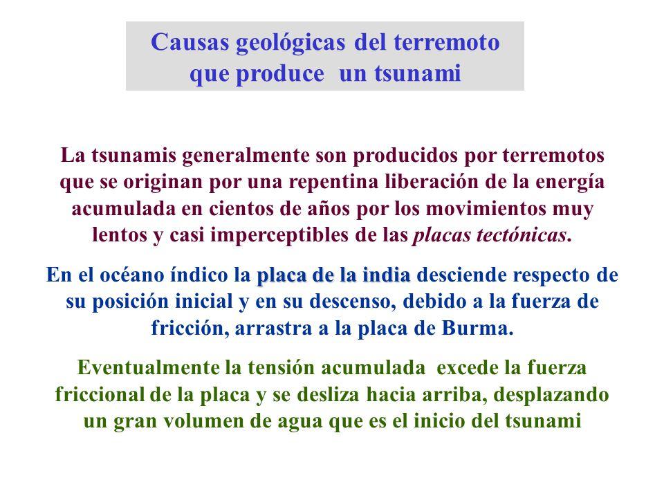 Causas geológicas del terremoto que produce un tsunami La tsunamis generalmente son producidos por terremotos que se originan por una repentina libera