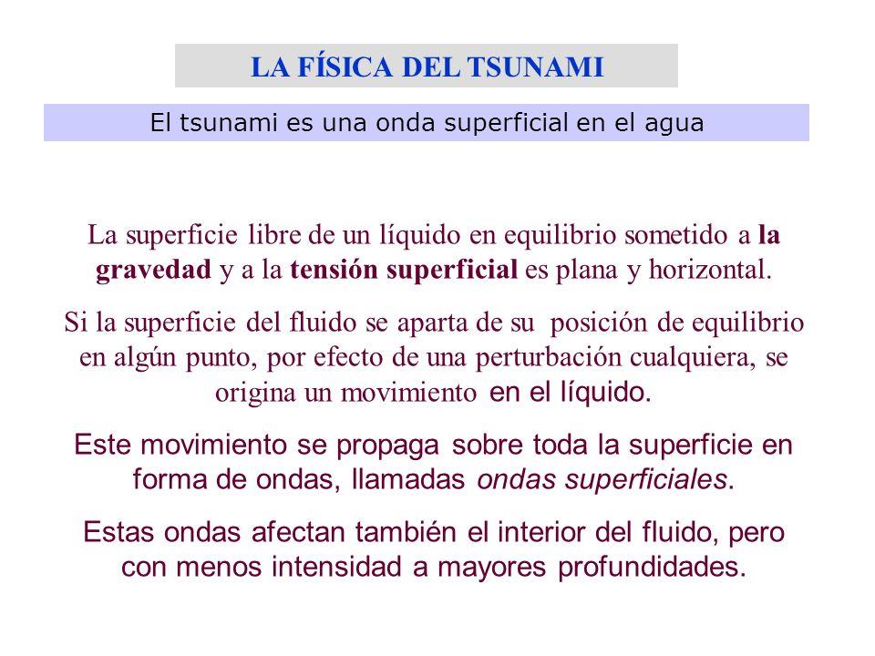 El tsunami es una onda superficial en el agua La superficie libre de un líquido en equilibrio sometido a la gravedad y a la tensión superficial es pla