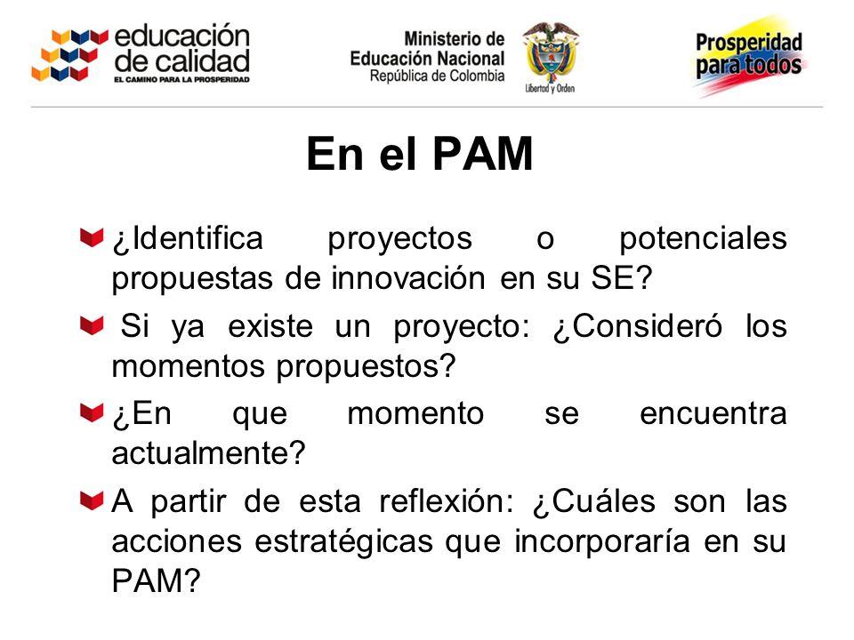 En el PAM ¿Identifica proyectos o potenciales propuestas de innovación en su SE? Si ya existe un proyecto: ¿Consideró los momentos propuestos? ¿En que