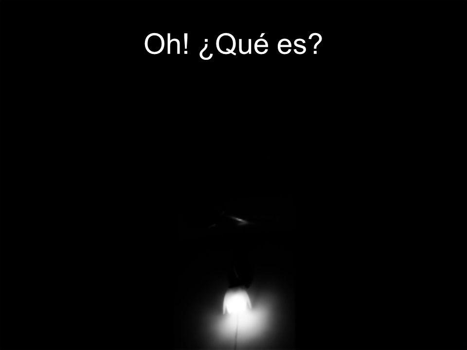 La luz se fue haciendo cada vez más grande, y se oyó … El mundo es gris porque lo habéis querido vosotros...