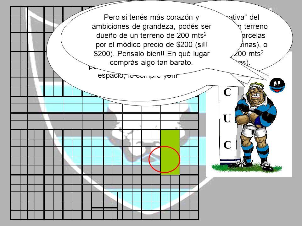 Esta cooperativa del rugby consta de un terreno formado por 440 parcelas de 20 mts 2 (líneas finas), o 44 parcelas de 200 mts 2 (líneas gruesas).