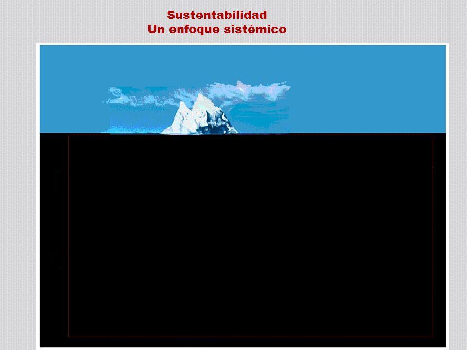 Sustentabilidad Un enfoque sistémico