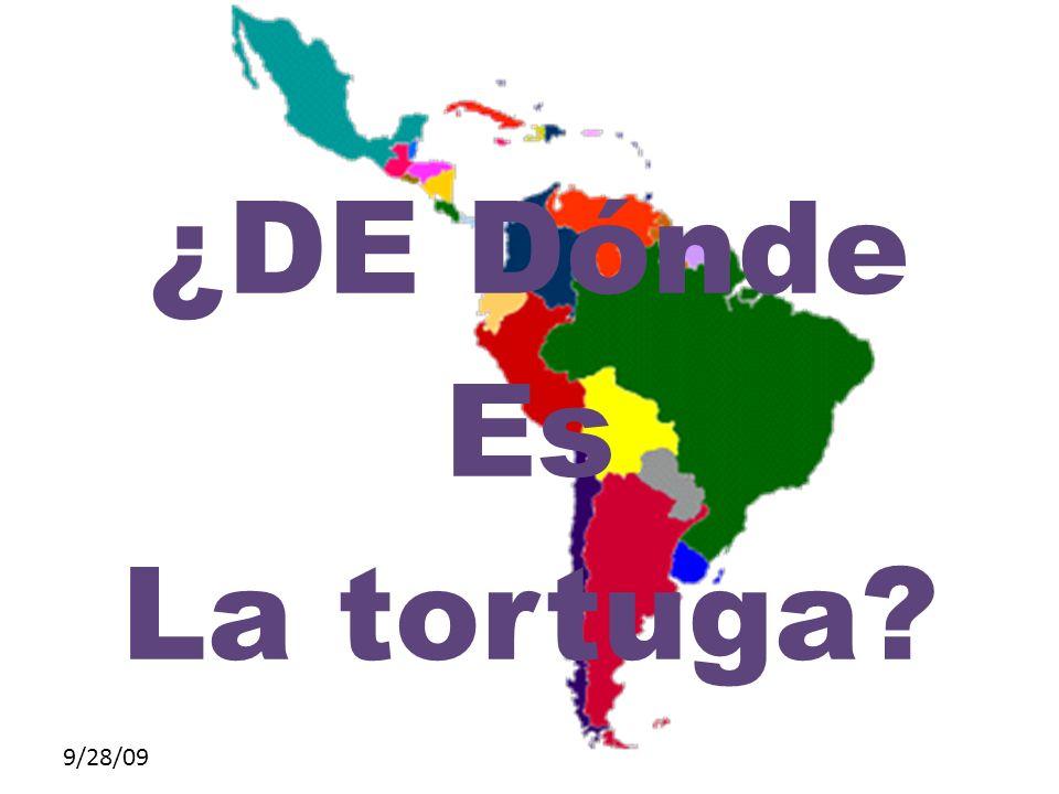 9/28/09 ¿DE Dónde Es La tortuga?