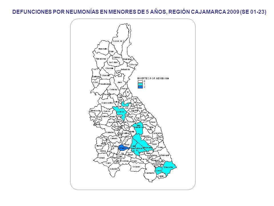 DEFUNCIONES POR NEUMONÍAS EN MENORES DE 5 AÑOS, REGIÓN CAJAMARCA 2009 (SE 01-23)