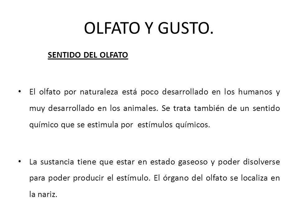 OLFATO Y GUSTO. SENTIDO DEL OLFATO El olfato por naturaleza está poco desarrollado en los humanos y muy desarrollado en los animales. Se trata también