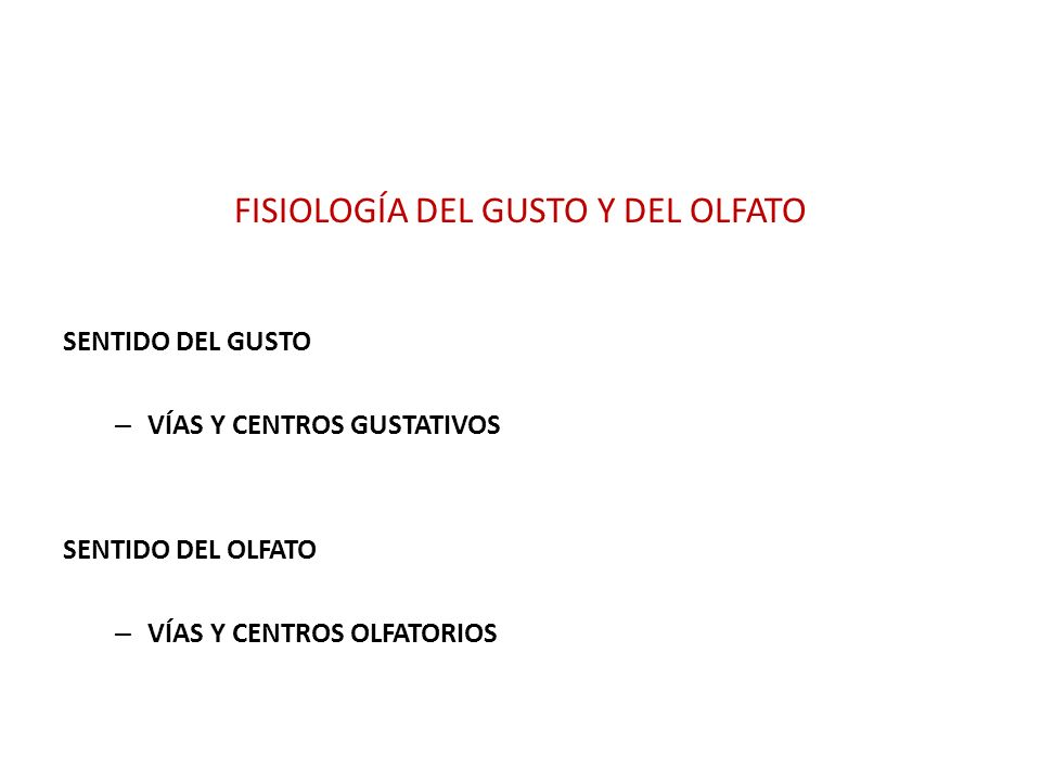 FISIOLOGÍA DEL GUSTO Y DEL OLFATO SENTIDO DEL GUSTO – VÍAS Y CENTROS GUSTATIVOS SENTIDO DEL OLFATO – VÍAS Y CENTROS OLFATORIOS