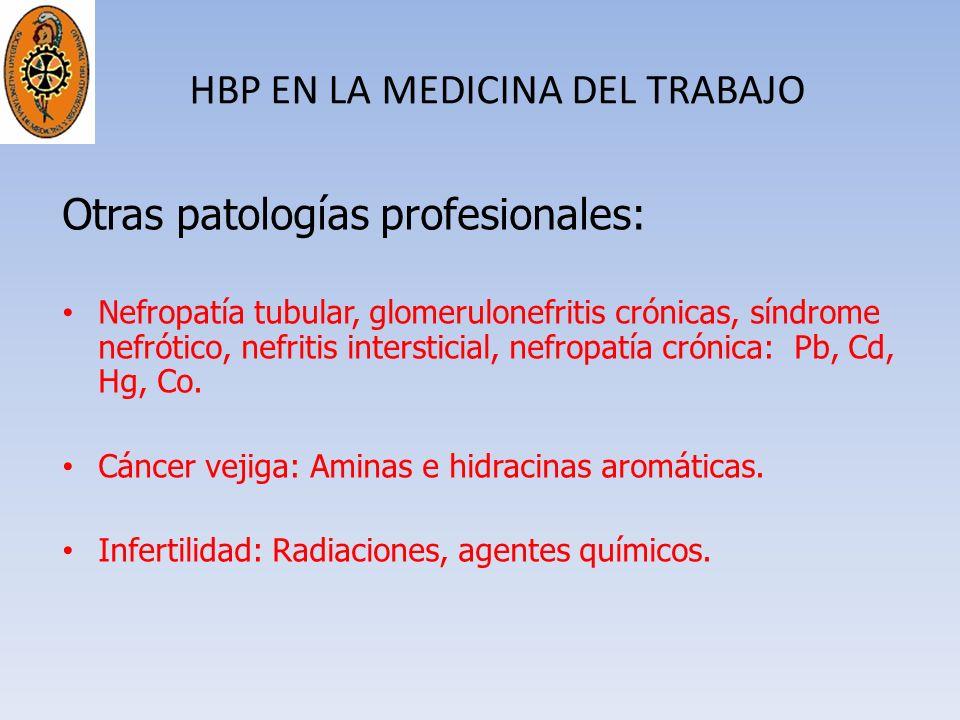 HBP EN LA MEDICINA DEL TRABAJO Otras patologías profesionales: Nefropatía tubular, glomerulonefritis crónicas, síndrome nefrótico, nefritis interstici
