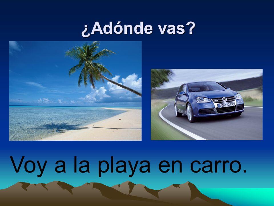 ¿Adónde vas? Voy a la playa en carro.
