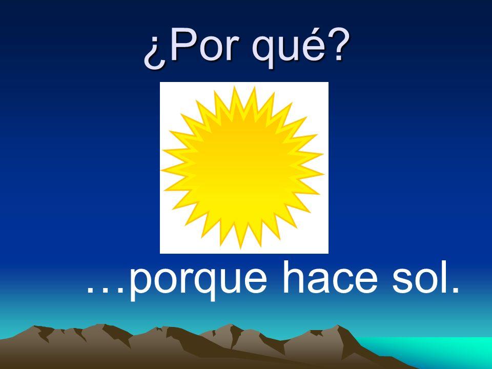 ¿Por qué? …porque hace sol.