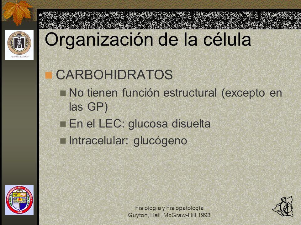 Fisiología y Fisiopatología Guyton, Hall, McGraw-Hill,1998 Organización de la célula CARBOHIDRATOS No tienen función estructural (excepto en las GP) E