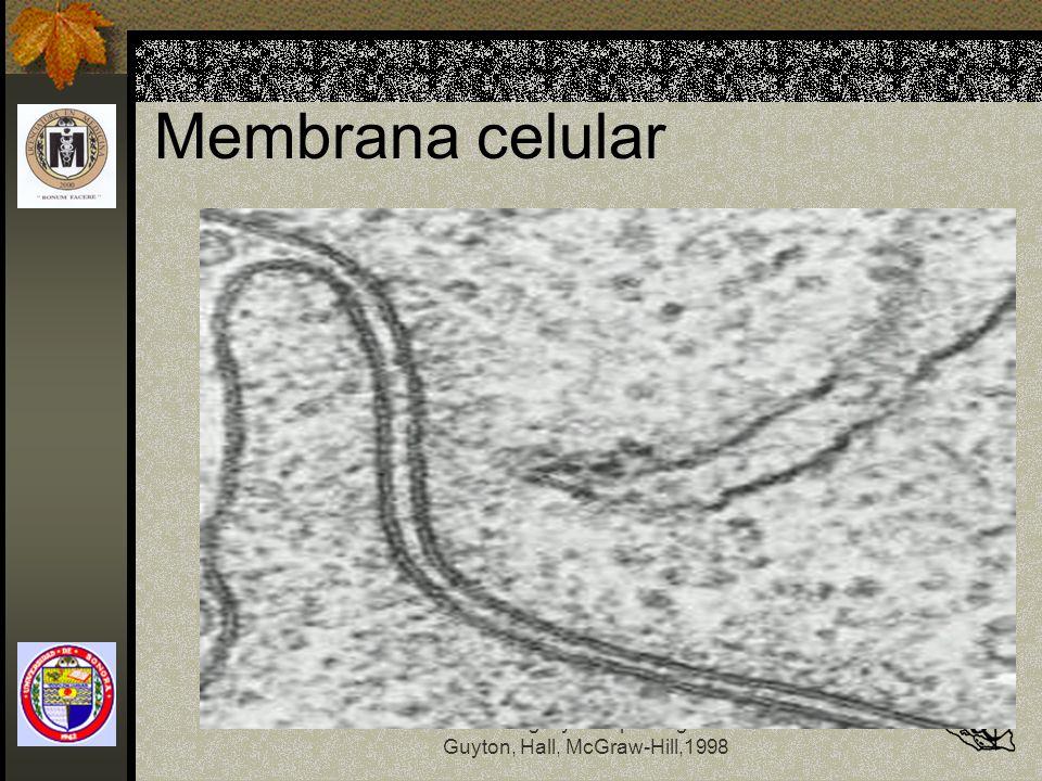 Fisiología y Fisiopatología Guyton, Hall, McGraw-Hill,1998 Membrana celular