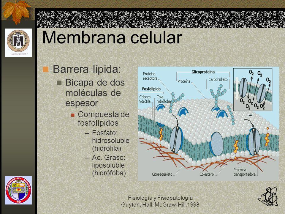 Fisiología y Fisiopatología Guyton, Hall, McGraw-Hill,1998 Membrana celular Barrera lípida: Bicapa de dos moléculas de espesor Compuesta de fosfolípid