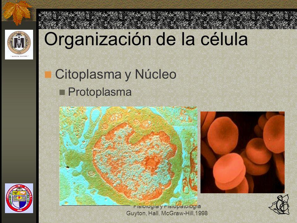 Fisiología y Fisiopatología Guyton, Hall, McGraw-Hill,1998 Organización de la célula Citoplasma y Núcleo Protoplasma