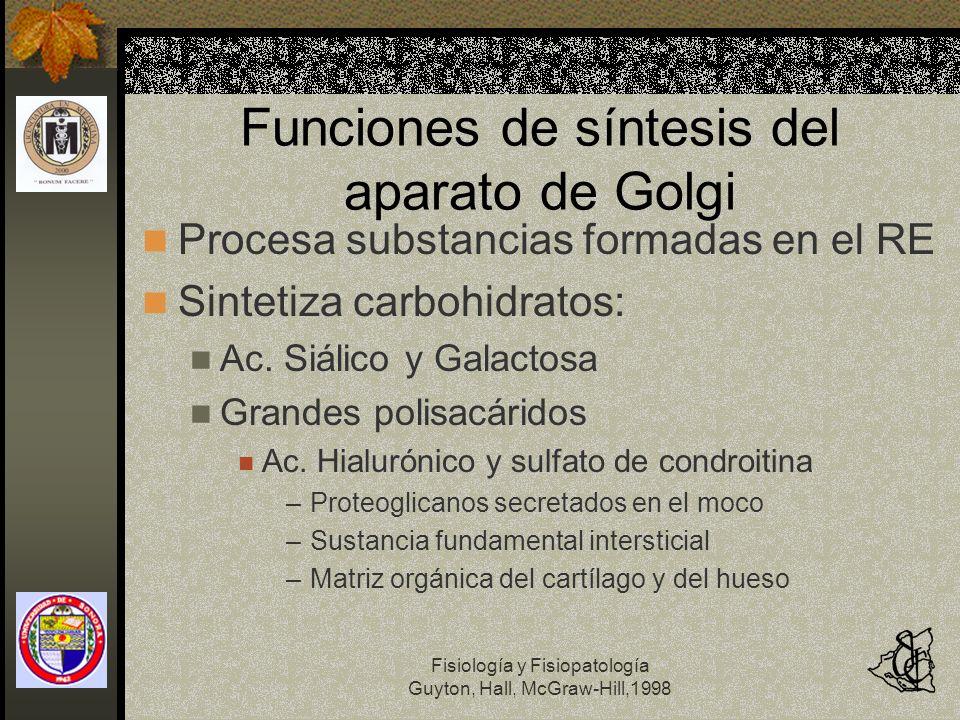 Fisiología y Fisiopatología Guyton, Hall, McGraw-Hill,1998 Funciones de síntesis del aparato de Golgi Procesa substancias formadas en el RE Sintetiza