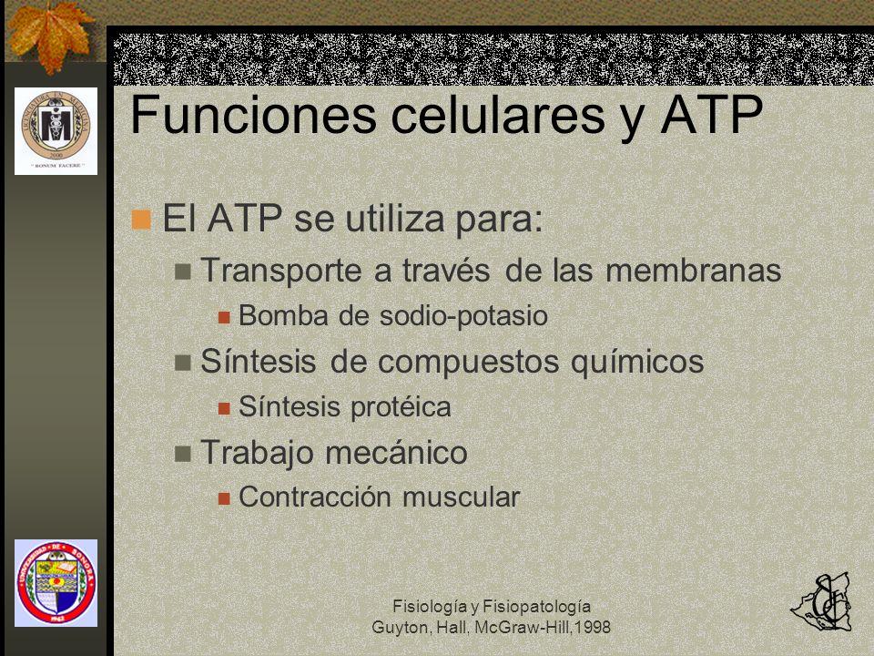 Fisiología y Fisiopatología Guyton, Hall, McGraw-Hill,1998 Funciones celulares y ATP El ATP se utiliza para: Transporte a través de las membranas Bomb