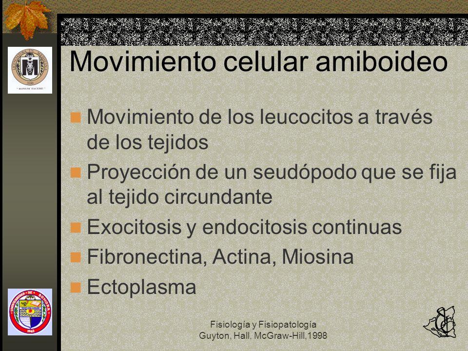 Fisiología y Fisiopatología Guyton, Hall, McGraw-Hill,1998 Movimiento celular amiboideo Movimiento de los leucocitos a través de los tejidos Proyecció