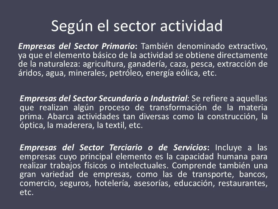 Según el sector actividad Empresas del Sector Primario: También denominado extractivo, ya que el elemento básico de la actividad se obtiene directamen