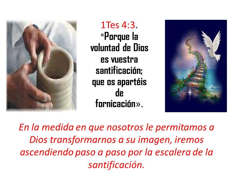 1Tes 4:3. « Porque la voluntad de Dios es vuestra santificación; que os apartéis de fornicación ». En la medida en que nosotros le permitamos a Dios t