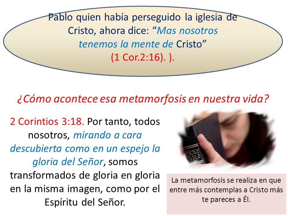 ¿Cómo acontece esa metamorfosis en nuestra vida? Pablo quien había perseguido la iglesia de Cristo, ahora dice: Mas nosotros tenemos la mente de Crist