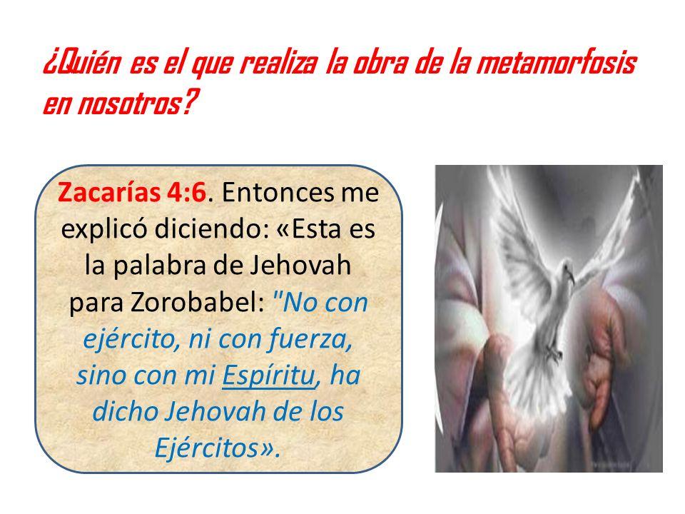 ¿Quién es el que realiza la obra de la metamorfosis en nosotros? Zacarías 4:6. Entonces me explicó diciendo: «Esta es la palabra de Jehovah para Zorob