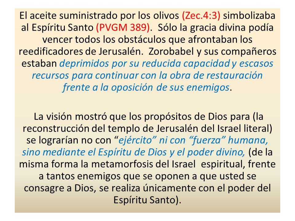 El aceite suministrado por los olivos (Zec.4:3) simbolizaba al Espíritu Santo (PVGM 389). Sólo la gracia divina podía vencer todos los obstáculos que