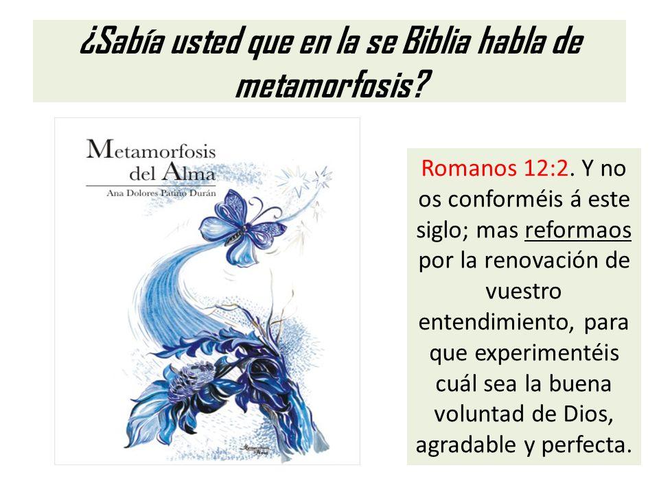 ¿Sabía usted que en la se Biblia habla de metamorfosis? Romanos 12:2. Y no os conforméis á este siglo; mas reformaos por la renovación de vuestro ente