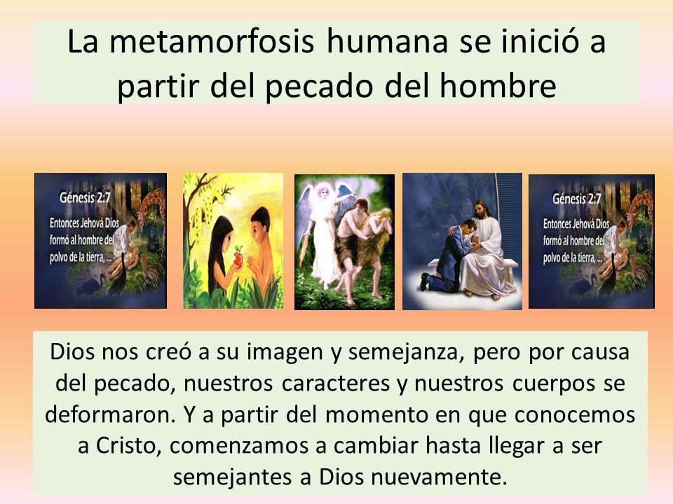 La metamorfosis humana se inició a partir del pecado del hombre Dios nos creó a su imagen y semejanza, pero por causa del pecado, nuestros caracteres