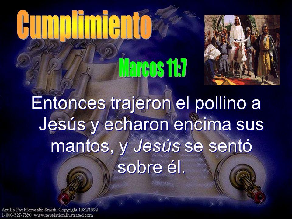 Entonces trajeron el pollino a Jesús y echaron encima sus mantos, y Jesús se sentó sobre él.