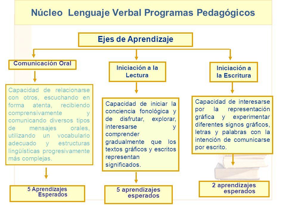 Núcleo Lenguaje Verbal Programas Pedagógicos Comunicación Oral Capacidad de relacionarse con otros, escuchando en forma atenta, recibiendo comprensiva