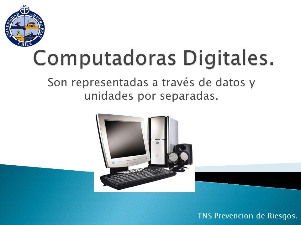 Son representadas a través de datos y unidades por separadas. TNS Prevencion de Riesgos.