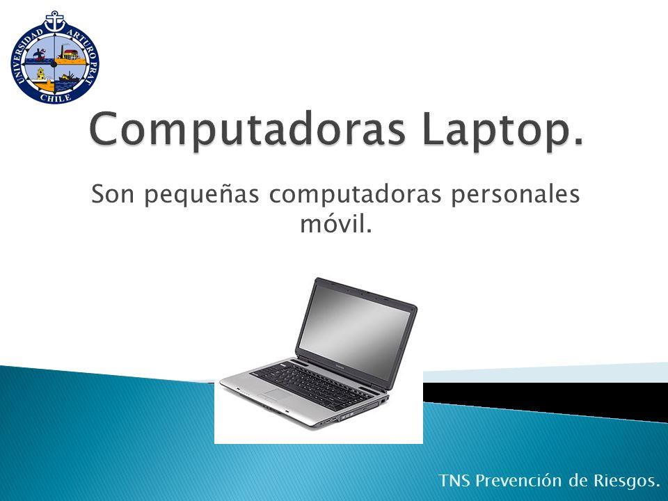 Son pequeñas computadoras personales móvil. TNS Prevención de Riesgos.