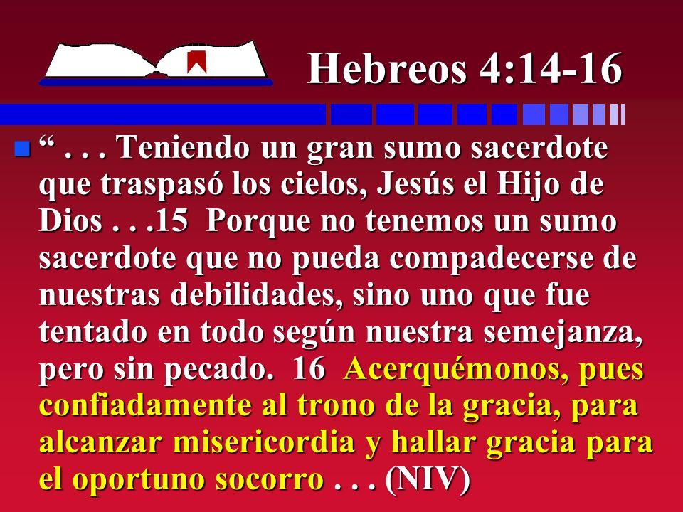Hebreos 4:14-16 n... Teniendo un gran sumo sacerdote que traspasó los cielos, Jesús el Hijo de Dios...15 Porque no tenemos un sumo sacerdote que no pu