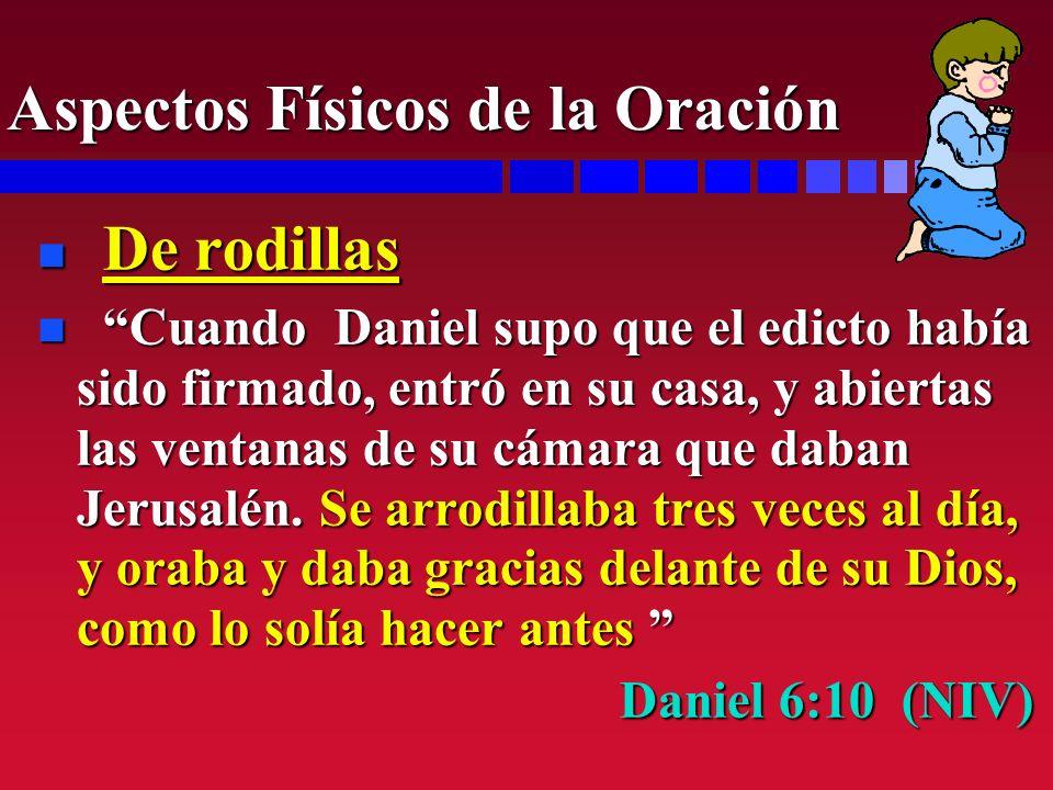 n De rodillas n Cuando Daniel supo que el edicto había sido firmado, entró en su casa, y abiertas las ventanas de su cámara que daban Jerusalén. Se ar