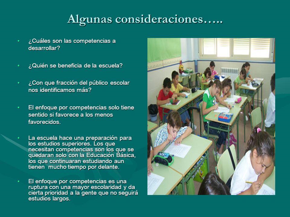 Algunas consideraciones….. ¿Cuáles son las competencias a desarrollar?¿Cuáles son las competencias a desarrollar? ¿Quién se beneficia de la escuela?¿Q