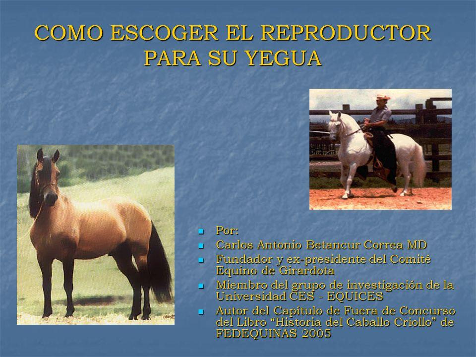 Importancia de la Hembra como Reproductora Luz de Medianoche 1.