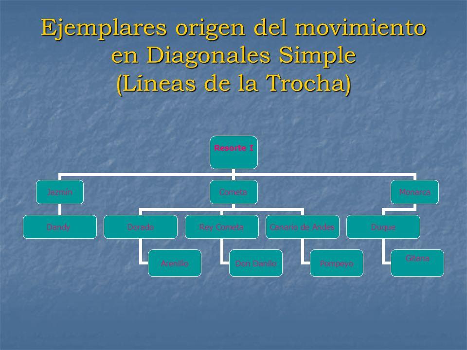 Ejemplares origen del movimiento en Diagonales Simple (Líneas de la Trocha) Resorte I Jazmín Dandy Cometa Dorado Arenillo Rey Cometa Don Danilo Canari