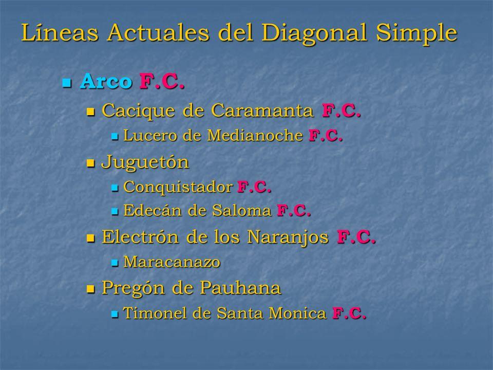 Líneas Actuales del Diagonal Simple Arco F.C. Arco F.C. Cacique de Caramanta F.C. Cacique de Caramanta F.C. Lucero de Medianoche F.C. Lucero de Median