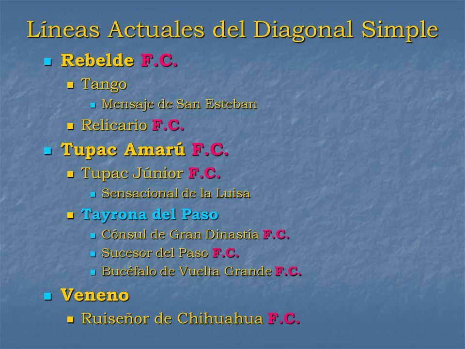 Líneas Actuales del Diagonal Simple Rebelde F.C. Rebelde F.C. Tango Tango Mensaje de San Esteban Mensaje de San Esteban Relicario F.C. Relicario F.C.
