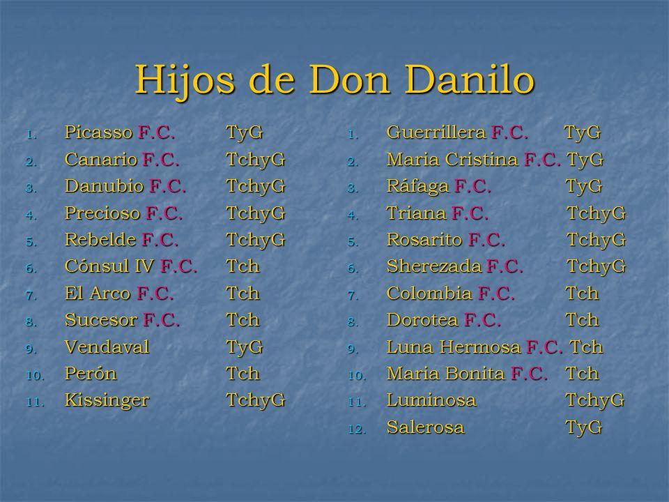 Hijos de Don Danilo 1. Picasso F.C. TyG 2. Canario F.C. TchyG 3. Danubio F.C. TchyG 4. Precioso F.C. TchyG 5. Rebelde F.C. TchyG 6. Cónsul IV F.C. Tch