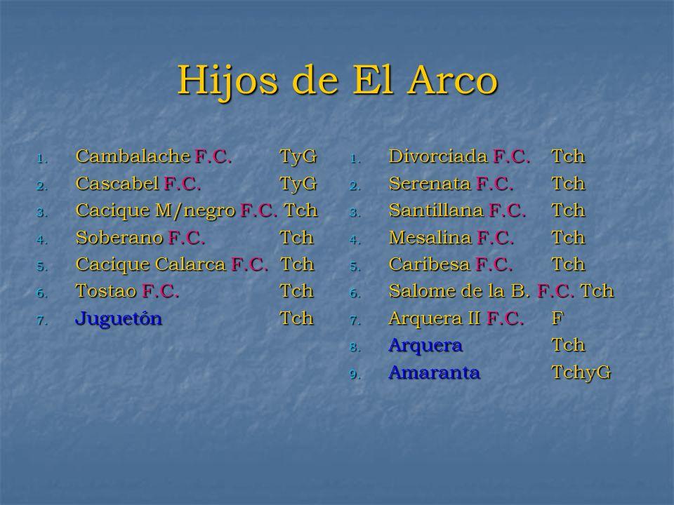 Hijos de El Arco 1. Cambalache F.C. TyG 2. Cascabel F.C. TyG 3. Cacique M/negro F.C. Tch 4. Soberano F.C. Tch 5. Cacique Calarca F.C. Tch 6. Tostao F.