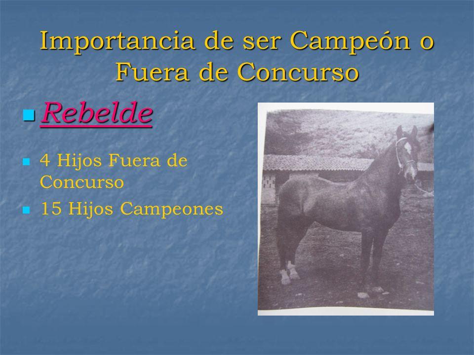 Importancia de ser Campeón o Fuera de Concurso Rebelde Rebelde 4 Hijos Fuera de Concurso 15 Hijos Campeones