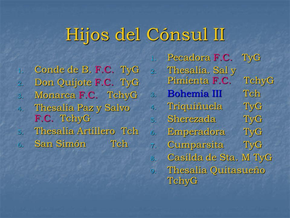 Hijos del Cónsul II 1. Conde de B. F.C. TyG 2. Don Quijote F.C. TyG 3. Monarca F.C. TchyG 4. Thesalia Paz y Salvo F.C. TchyG 5. Thesalia Artillero Tch