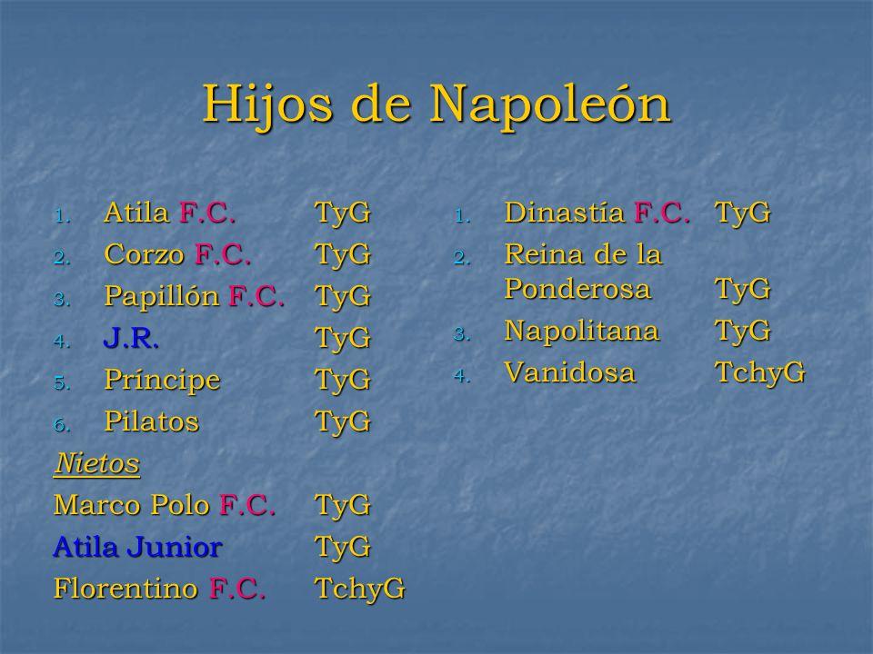 Hijos de Napoleón 1. Atila F.C.TyG 2. Corzo F.C.TyG 3. Papillón F.C.TyG 4. J.R.TyG 5. PríncipeTyG 6. PilatosTyG Nietos Marco Polo F.C. TyG Atila Junio