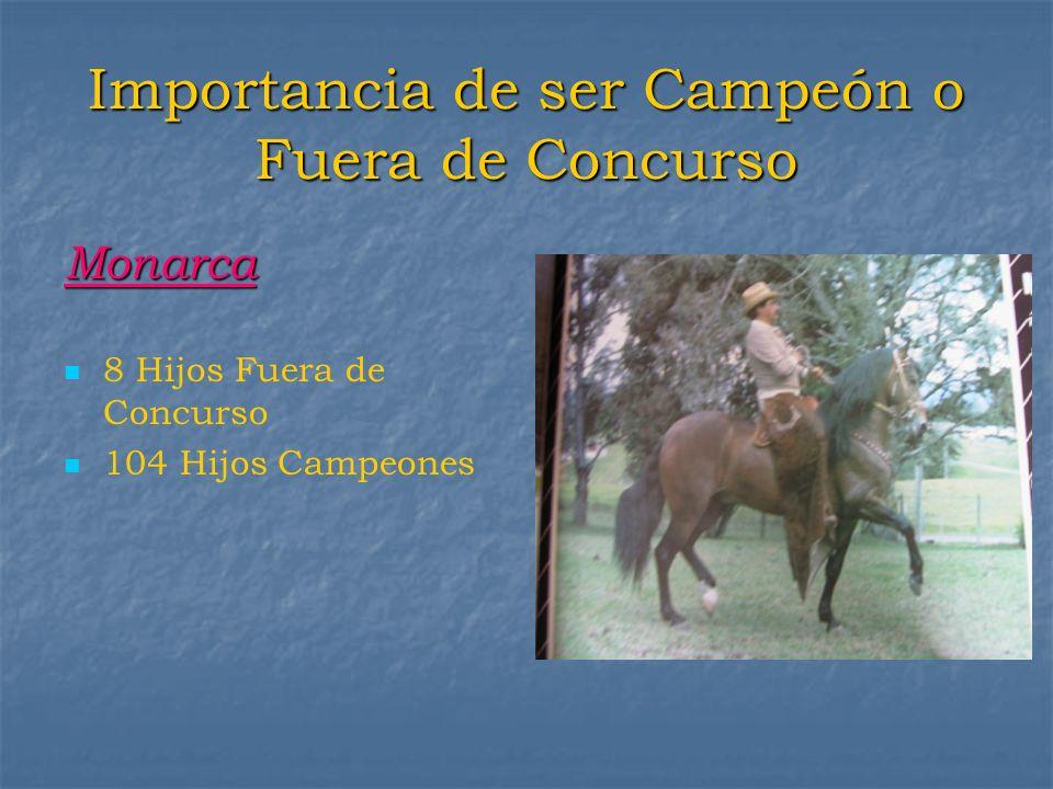 Importancia de ser Campeón o Fuera de Concurso Monarca 8 Hijos Fuera de Concurso 104 Hijos Campeones