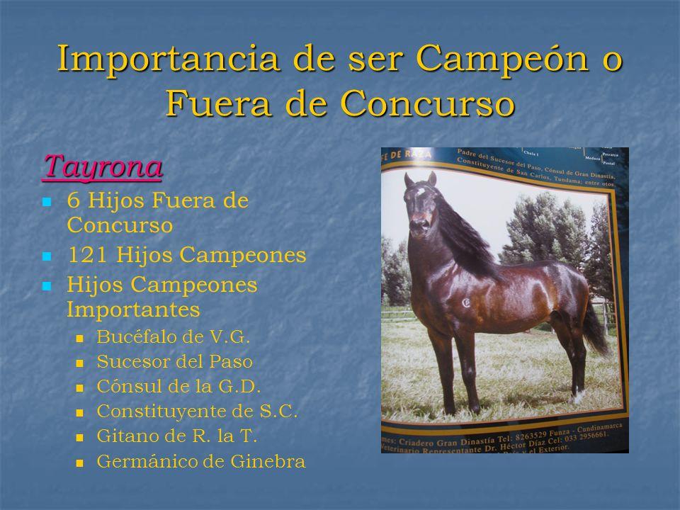 Importancia de ser Campeón o Fuera de Concurso Tayrona 6 Hijos Fuera de Concurso 121 Hijos Campeones Hijos Campeones Importantes Bucéfalo de V.G. Suce