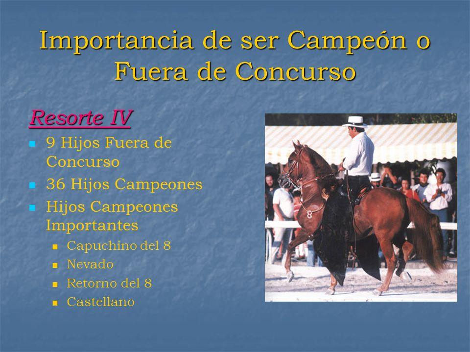 Importancia de ser Campeón o Fuera de Concurso Resorte IV 9 Hijos Fuera de Concurso 36 Hijos Campeones Hijos Campeones Importantes Capuchino del 8 Nev