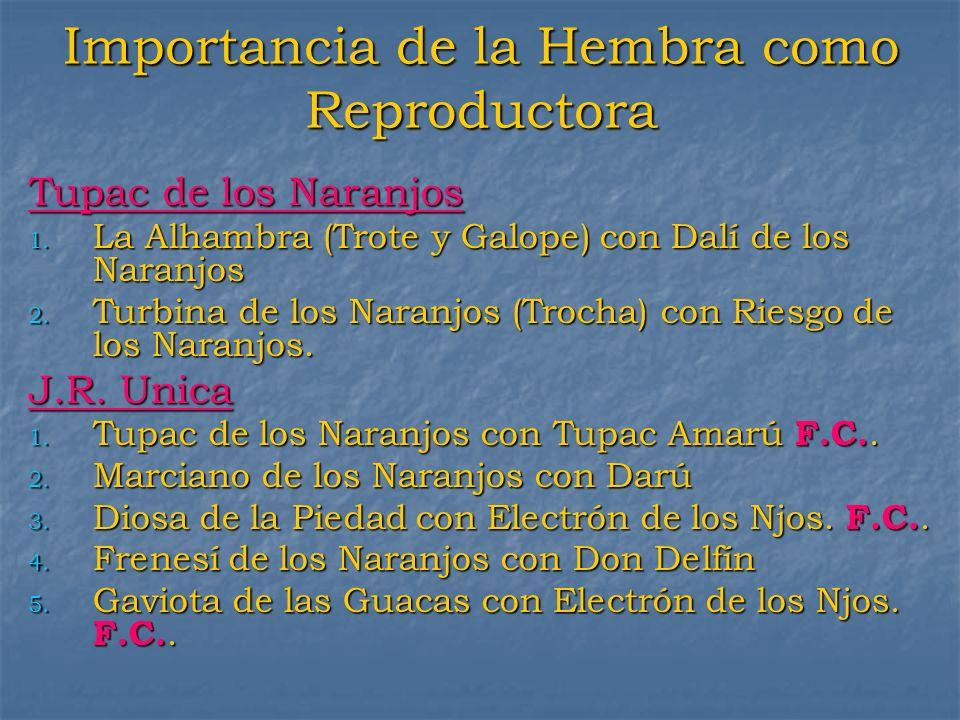 Importancia de la Hembra como Reproductora Tupac de los Naranjos 1. La Alhambra (Trote y Galope) con Dalí de los Naranjos 2. Turbina de los Naranjos (