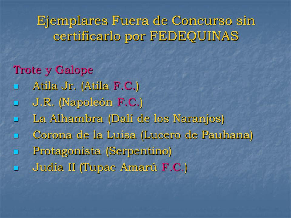 Ejemplares Fuera de Concurso sin certificarlo por FEDEQUINAS Trote y Galope Atila Jr. (Atila F.C.) Atila Jr. (Atila F.C.) J.R. (Napoleón F.C.) J.R. (N