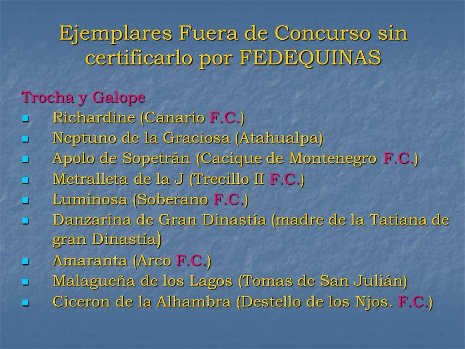 Ejemplares Fuera de Concurso sin certificarlo por FEDEQUINAS Trocha y Galope Richardine (Canario F.C.) Richardine (Canario F.C.) Neptuno de la Gracios